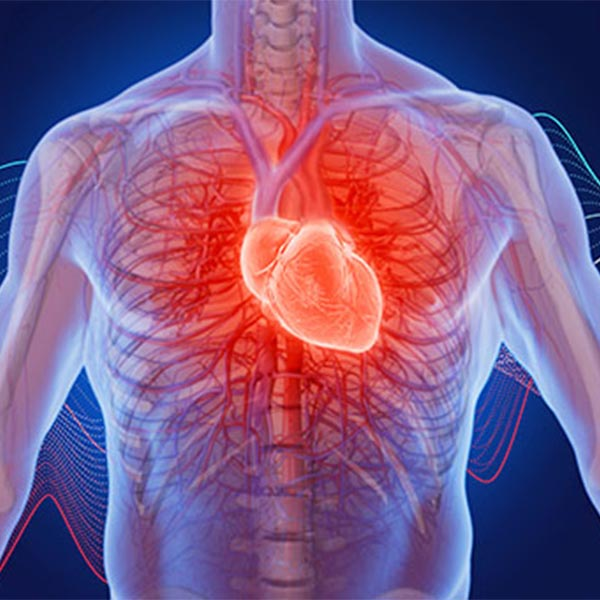 What Causes Headache and Heart Palpitation?