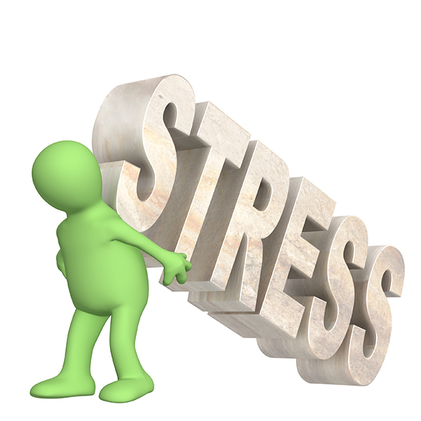 Definition of Stress Explained