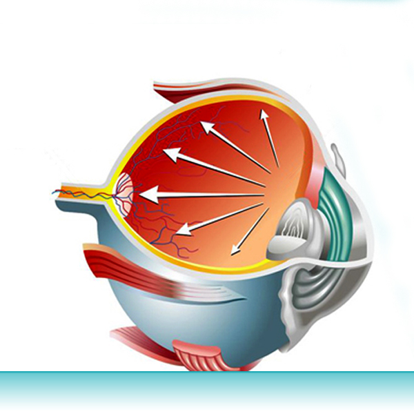 What is glaucoma and how prevalent is it?