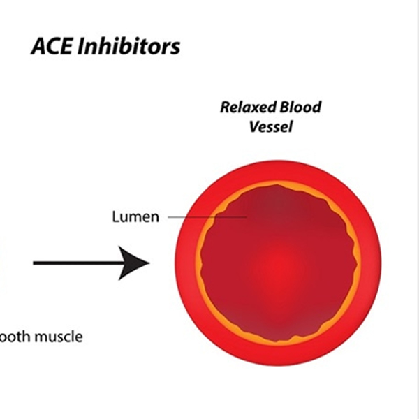 What is the alternative if the patient cannot tolerate ace inhibitors?