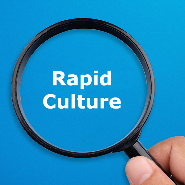 What is rapid culture?