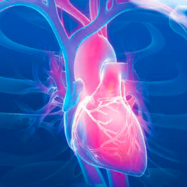 Should bypass surgery be done in low ejection fraction?