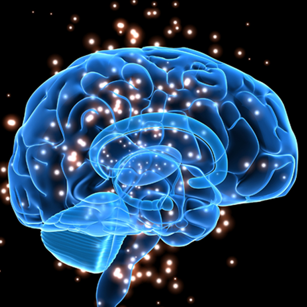 What are the new treatment modalities in mild cognitive impairment?