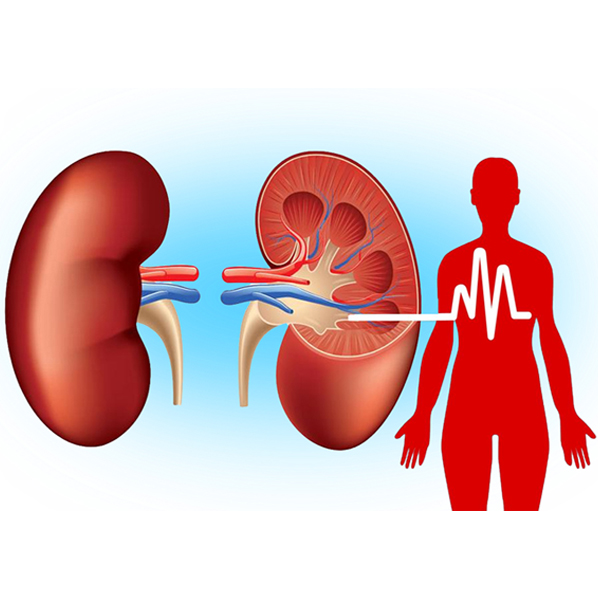 I have CKD and hypertension - Can pain killers worsen my condition?