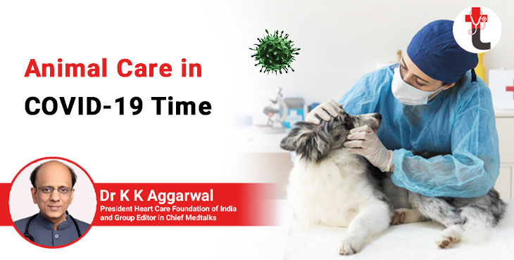 Animal care in COVID 19 time